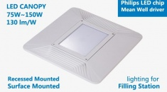 Hitecnico 110W LED Canopy IP66 to Replace 300W MH in Filling Station Lighting